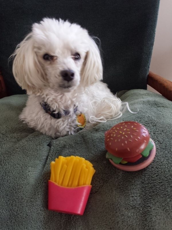 Andy and his burger and fries